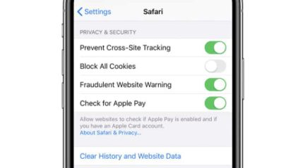 Clear your data and history iphone to remove virus from iphone