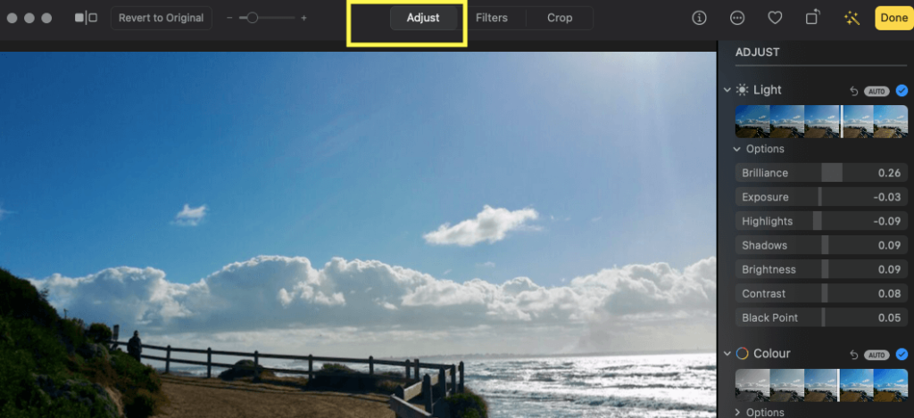 4 Click on Adjust tab to open Colour, Exposure, Red Eye and other enhancements