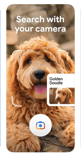 Search products animals and anything with google lens