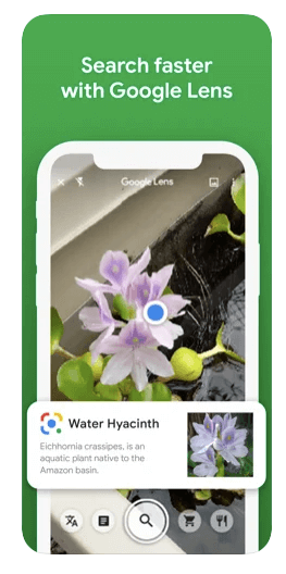 Search things faster with google lens on iPhone