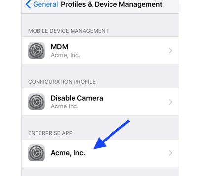 tap the profile name for the developer of the untrusted app.