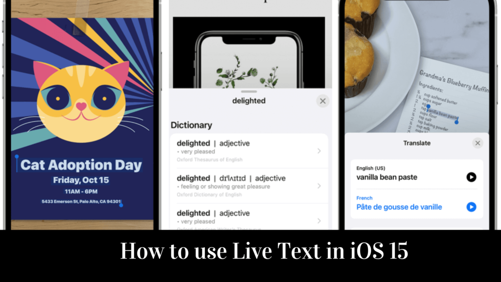 How to use Live Text in iOS 15 iPhone and iPad