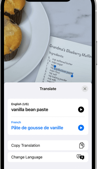 Translate text within a photo or image on iPhone Using Live text